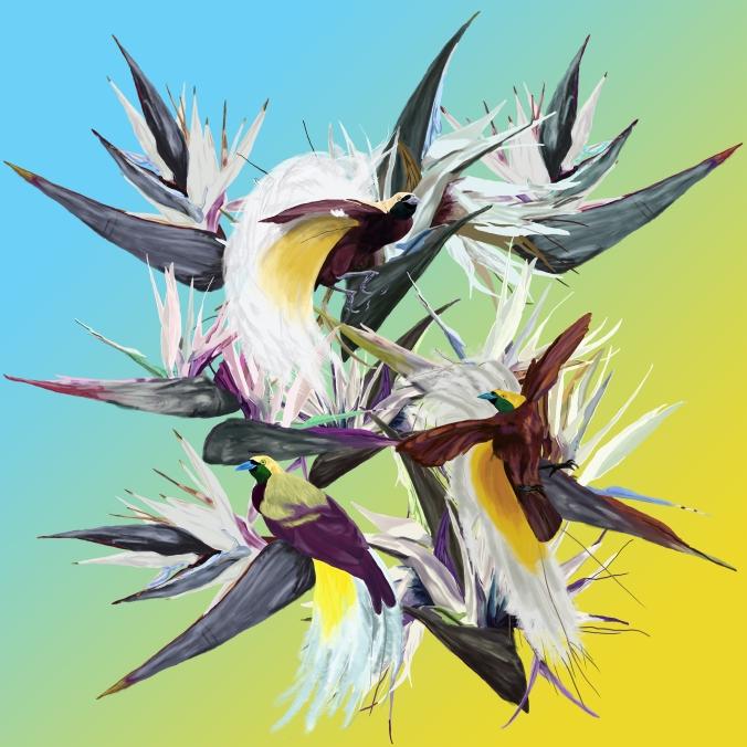 birds of paradise final