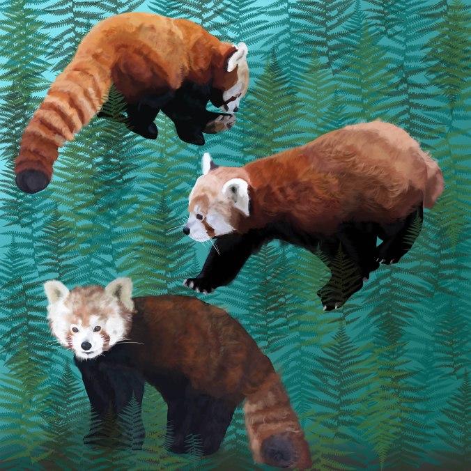 red panda scarf